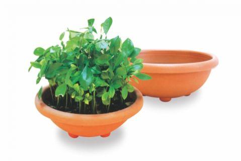 【Aiermei Lotus Pot】L-123 Pottery Design Pot